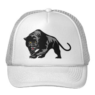 Black Panther Hats