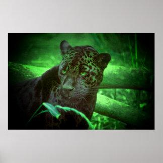 Black Panther Jaguar Poster