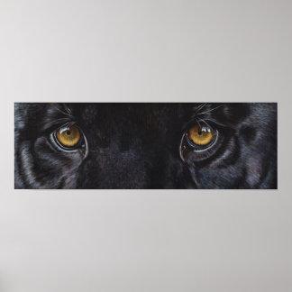 Black panther leopard eyes poster