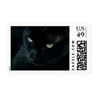 Black panther - Postage