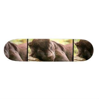 Black Panther Sleeping Skateboard