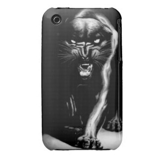 Black Panther & The Boss Case