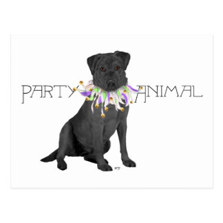 Black Party Animal Labrador Retriever Postcard