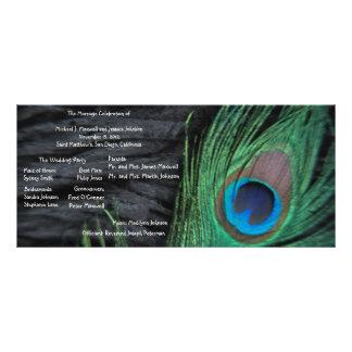 Black Peacock Velvet Background Wedding Program Custom Rack Cards