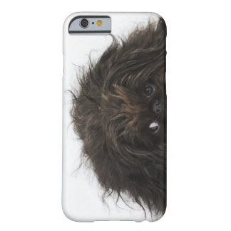 Black Pekingese dog lying down Barely There iPhone 6 Case