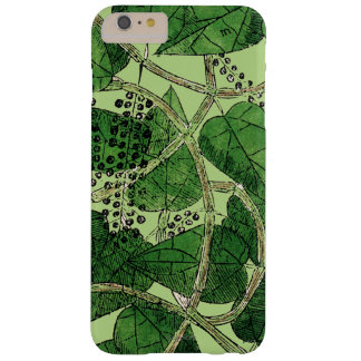 Black Pepper Plant, 1578 Barely There iPhone 6 Plus Case