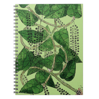 Black Pepper Plant, 1578 Spiral Note Books