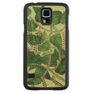 Black Pepper Plant, 1578 Carved® Maple Galaxy S5 Case