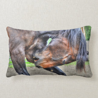 Black Percheron Gelding Horse Preening Photo Lumbar Pillow