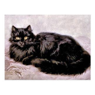 Black Persian Cat Postcard