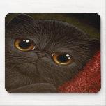 BLACK PERSIAN KITTEN CAT Mousepad