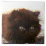 Black persian kitten ceramic tiles