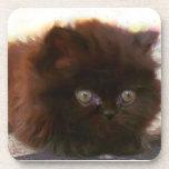 Black persian kitten drink coasters