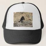 "Black Phoebe Custom Photo Trucker Hat<br><div class=""desc"">A Photo of a Black Phoebe on a Log</div>"