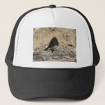 "Black Phoebe Custom Photo Trucker Hat<br><div class=""desc"">A Photo of a Black Phoebe on a Log</div>"