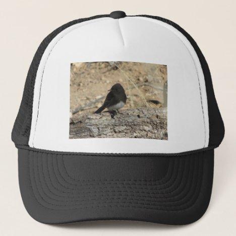 Black Phoebe Custom Photo Trucker Hat