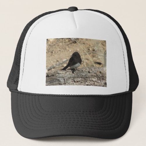 Black Phoebe Custom Photo Trucker Hat