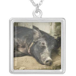 Black Pig Resting Necklace
