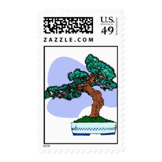 Black Pine Bonsai Graphic Image Stamp