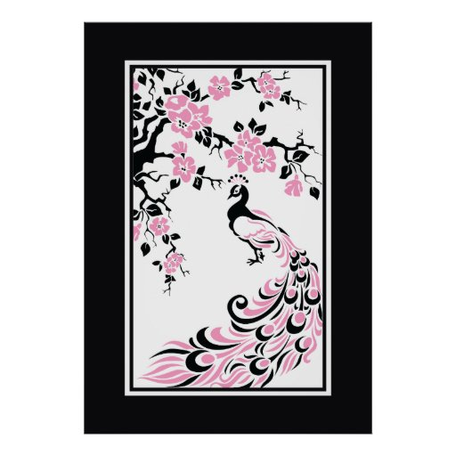 Black, pink, white peacock and cherry blossoms posters