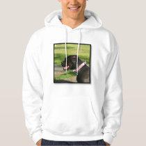 Black Pitbull sweatshirt
