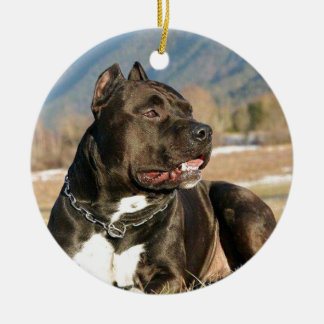black pitt bull dog ceramic ornament