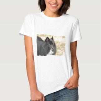 Black Pomeranian  Ladies T-Shirt