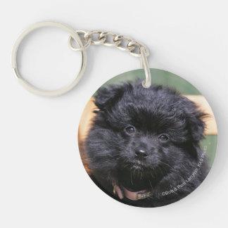 Black Pomeranian Puppy Keychain