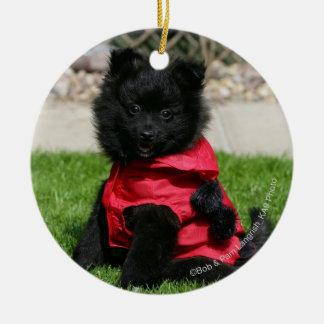 Black Pomeranian Puppy Looking at Camera Ceramic Ornament