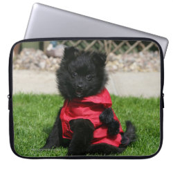 Black Pomeranian Puppy Looking at Camera Laptop Sleeve