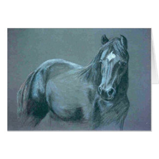 Black Pony Card