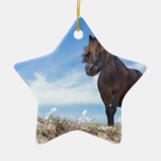 Black pony on sand with blue sky ceramic ornament