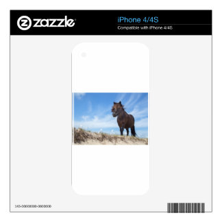 Black pony on sand with blue sky decals for the iPhone 4