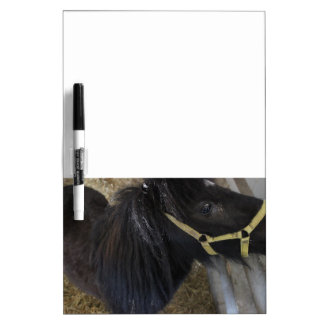 Black Pony Photo Dry Erase Board