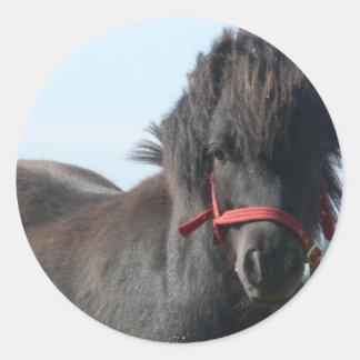 Black Pony Stickers