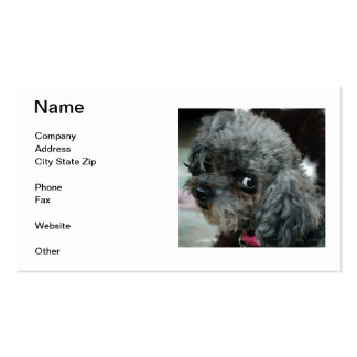 Black Poodle Business Cards