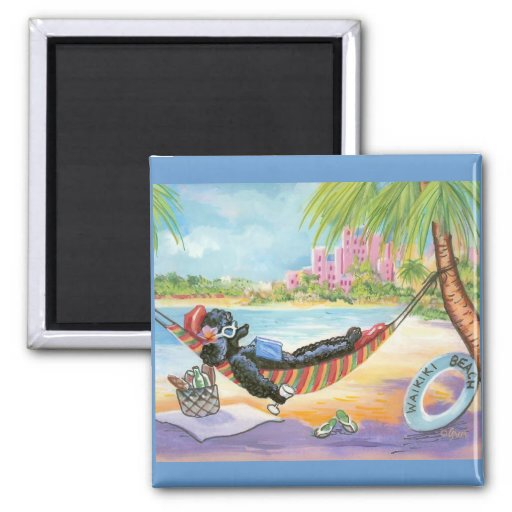 Black Poodle in Hawaii Beach Scene Refrigerator Magnets