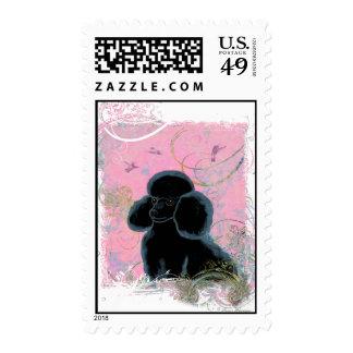 Black Poodle Portrait Hummingbirds Postage Stamps