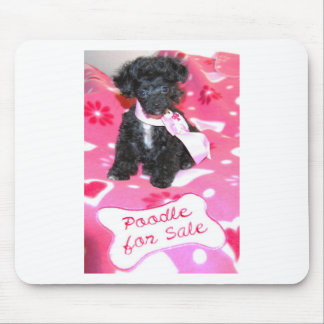 Black Poodle puppy for Sale Pink Mouse Pad