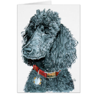 Black Poodle Whitney  Greeting Cards