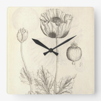 Black Poppy Square Wall Clock