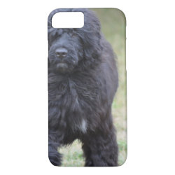Case-Mate Barely There iPhone 7 Case with Portuguese Water Dog Phone Cases design
