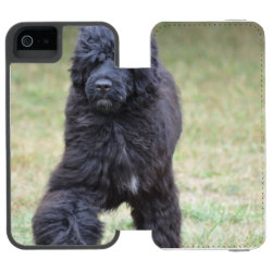 Incipio Watson™ iPhone 5/5s Wallet Case with Portuguese Water Dog Phone Cases design