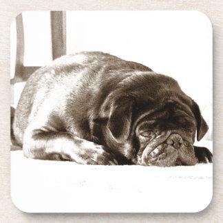 Black Pug Coaster