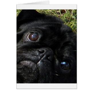 black-pug eyes.png greeting card