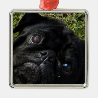 black-pug eyes.png metal ornament