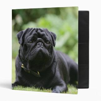 Black Pug Laying Down Binder