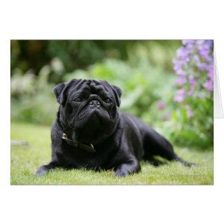 Black Pug Laying Down Greeting Card