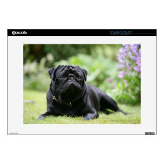 Black Pug Laying Down Laptop Decals