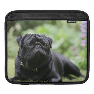 Black Pug Laying Down Sleeve For iPads